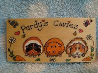 Wooden Guinea Pig Cavies Cavy  Hutch Run Cage or Bedroom Sign Personalised Colours & Phrasing Each one Unique